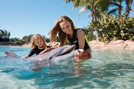 Discovery_cove4